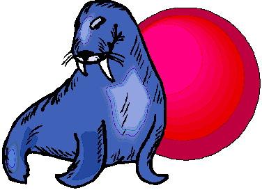 walrus-bewegende-animatie-0027