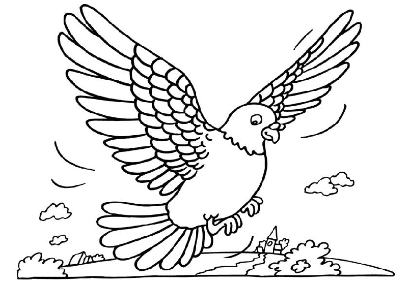 kleurplaat-duif-bewegende-animatie-0003