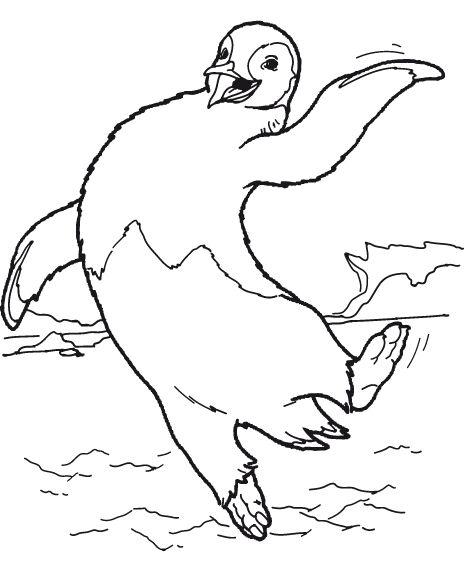 kleurplaat-pinguin-bewegende-animatie-0020