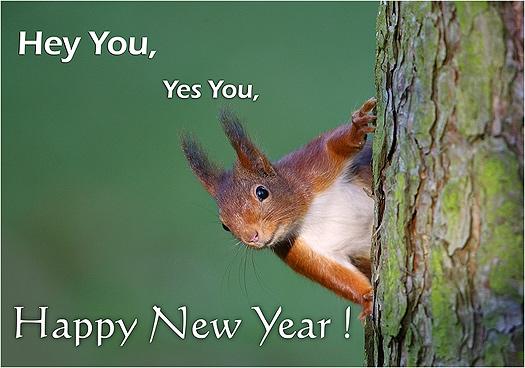 Nieuwjaar Bewegende Afbeeldingen Gifs Animaties 100 Gratis