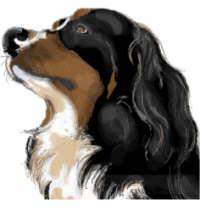 berner-sennen-hond-bewegende-animatie-0088