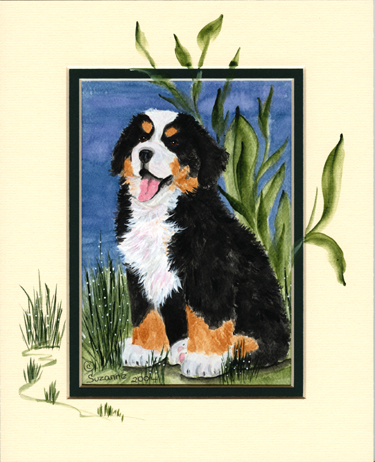 berner-sennen-hond-bewegende-animatie-0097