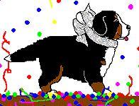 berner-sennen-hond-bewegende-animatie-0103