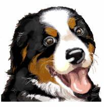 berner-sennen-hond-bewegende-animatie-0140