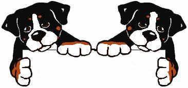 berner-sennen-hond-bewegende-animatie-0188