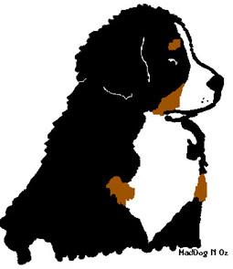 berner-sennen-hond-bewegende-animatie-0199