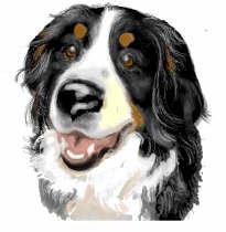 berner-sennen-hond-bewegende-animatie-0232