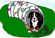 berner-sennen-hond-bewegende-animatie-0250