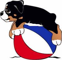 berner-sennen-hond-bewegende-animatie-0268