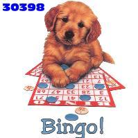 bingo-bewegende-animatie-0025